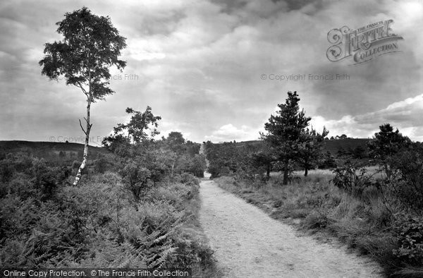 Camberley, Barossa, Old Dean Common 1931