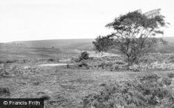 Cannock, Cannock Chase c.1965