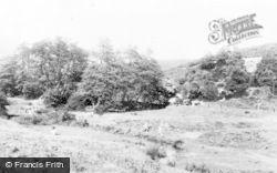 Cannock, Chase, Brindley Heath c.1960