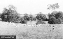 Cannock, Horns Mill c.1960