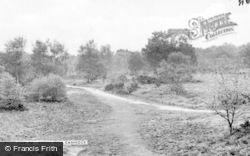 Cannock, Shoal Hill c.1955