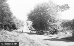 Cannock, The Chase c.1960