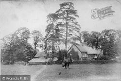 Capel, Aldhurst Farm 1906