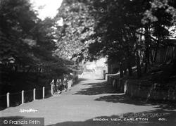 Carleton, Brook View c.1900