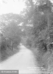 Carleton, Carla Beck Road c.1900
