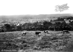 Carmarthen, From Penlan 1910