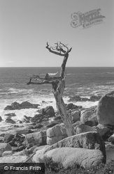 17 Mile Drive 2002, Carmel-By-The-Sea