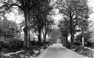 Carshalton, Beeches Avenue 1928