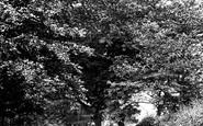 Caterham, Tupwood Lane 1907