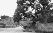 Caton, the Druids' Oak c1955