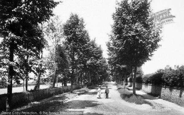 Photo of Caversham, St Peter's Avenue 1908