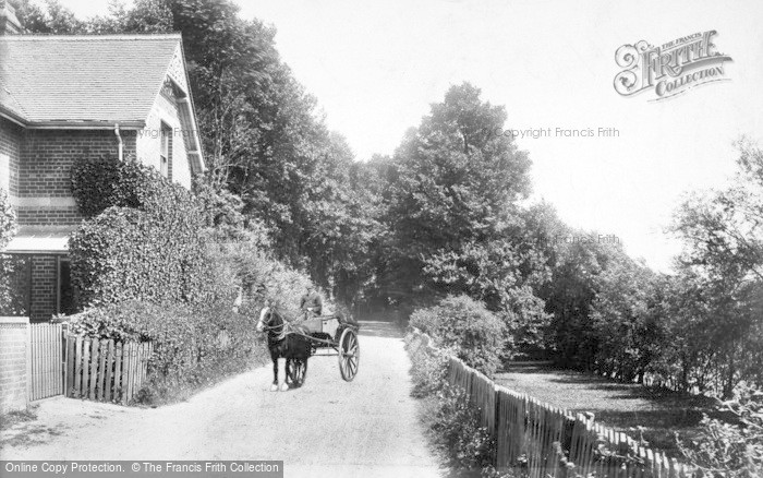 Photo of Caversham, The Warren 1904