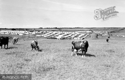 The Holiday Camp c.1960, Cayton Bay