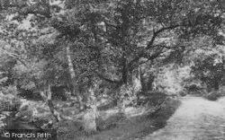 Chagford, Holy Street 1907
