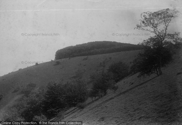 Photo of Chanctonbury Ring, 1894