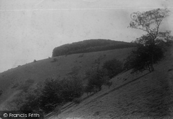 Chanctonbury Ring, 1894