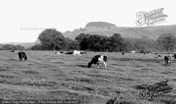 Photo of Chanctonbury Ring, c.1960