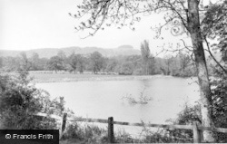 Chanctonbury Ring, The Ring And Downs c.1955