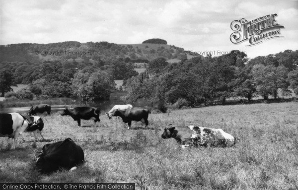 Photo of Chanctonbury Ring, The Ring And Wiston House c.1960