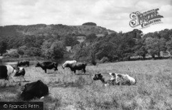 Chanctonbury Ring, The Ring And Wiston House c.1960