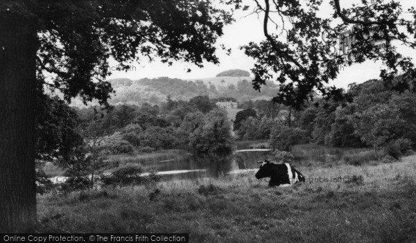 Photo of Chanctonbury Ring, The Ring And Wiston Pond c.1960