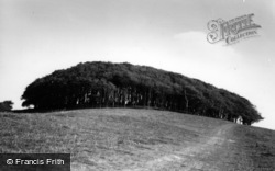 Chanctonbury Ring, The Ring c.1960