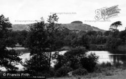 Chanctonbury Ring, The Ring From Wiston Pond c.1960