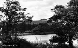 Chanctonbury Ring, View From Wiston Pond c.1960