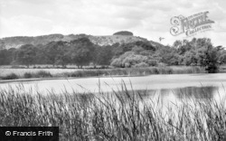 Chanctonbury Ring, Wiston Pond c.1960