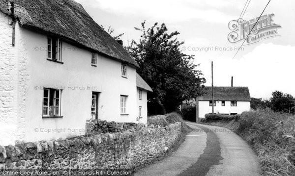 Chardstock, Holy City c1960