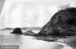 The Cliffs And Beach c.1884, Charlestown