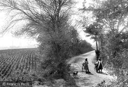 Chartham, A Country Lane 1906