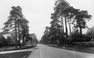 Chelwood Gate, 1928
