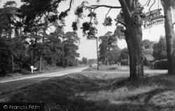 Chelwood Gate, Ashdown Forest c.1950
