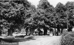 Chenies, The Bus Stop c.1950