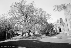 The Castle And Walnut Tree 1957, Chepstow