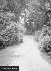 Chertsey, St Ann's Hill 1966