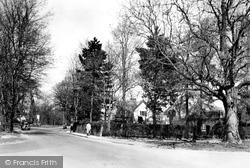 Chesham Bois, Bois Lane c.1955