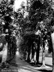 Chesham, The Avenue 1897