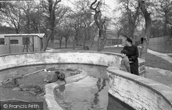 Chessington, Zoo, Coypu 1951