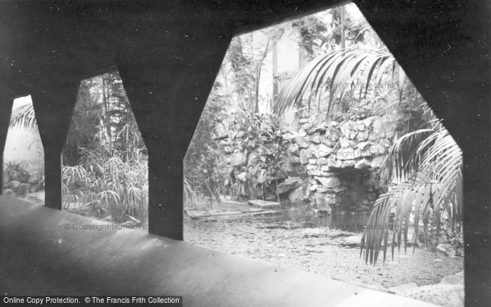 Photo of Chester Zoo, c.1960