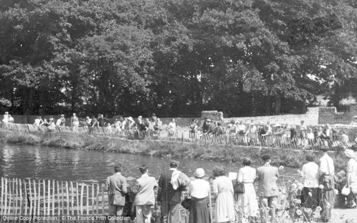 Photo of Chester Zoo, Feeding The Sea Lions c.1950
