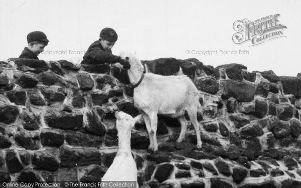 Photo of Chester Zoo, Meeting The Goats c.1955