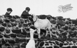 Chester Zoo, Meeting The Goats c.1955