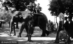 Chester Zoo, Molly The Elephant Steps Out c.1950