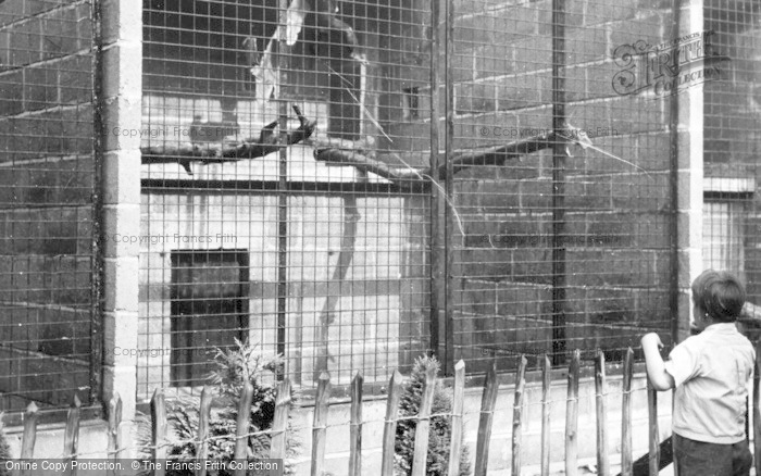 Photo of Chester Zoo, The Chimpanzees House c.1950