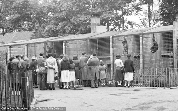 Photo of Chester Zoo, The Chimpanzees House c.1955