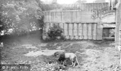 Chester Zoo, The Lions Den c.1955