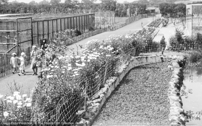 Photo of Chester Zoo, The Parrot Aviaries c.1950