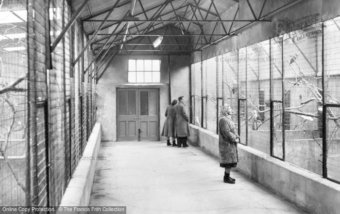 Photo of Chester Zoo, The Parrot House c.1955